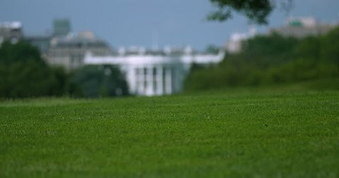 White House Rack Focus with Grass from Capital Mall Washington DC