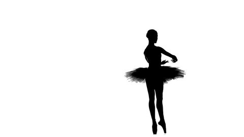 young beautiful dancer posing on a white background. ballet dancer in white tutu, girl in pointe, silhouette, slow motion