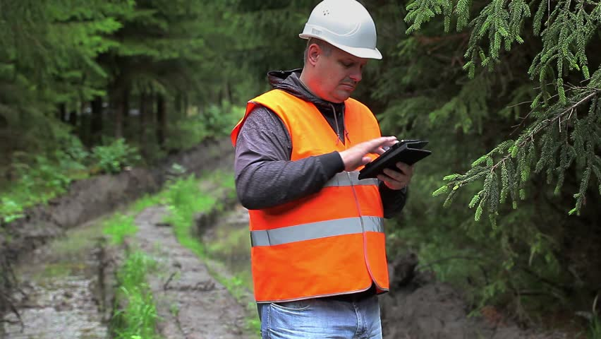 Forest officer working with tablet PC on rutted forest road | Shutterstock HD Video #11035964