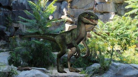 velociraptor dinosaur in nature