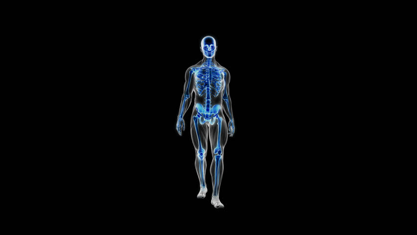 Full Body Blue Glowing Scan Stock Footage Video 100 Royalty Free