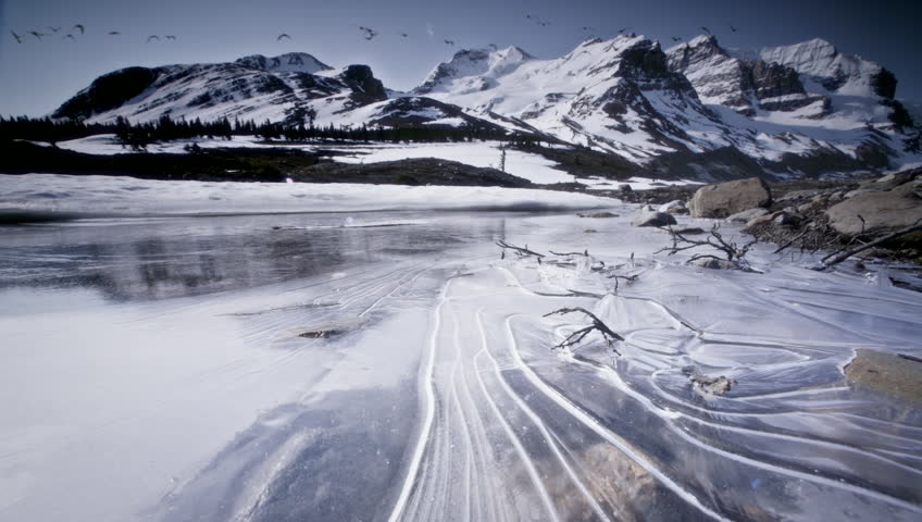 Geese flying over frozen lake and mountains, Banff, NP, Canada