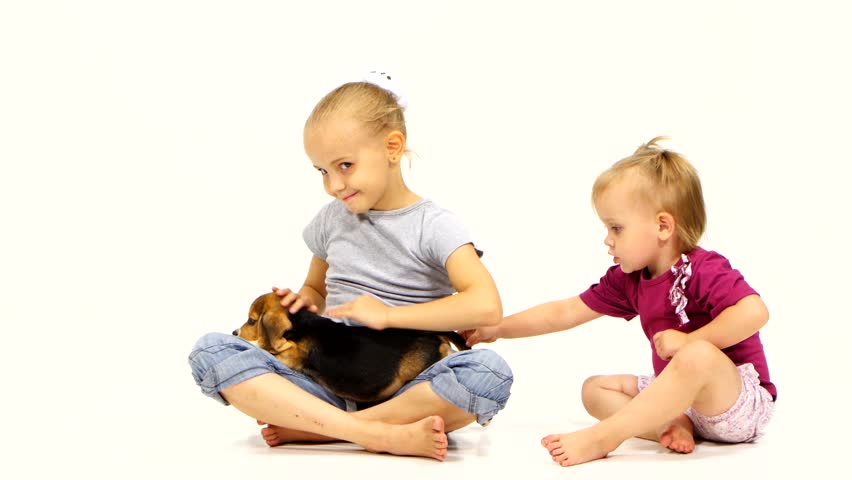 A Baby With Beagle Puppy Stock Footage Video 100 Royalty Free