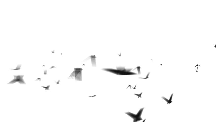 flock of birds isolated on white ( Series 1 - Version from 1 to 3 )