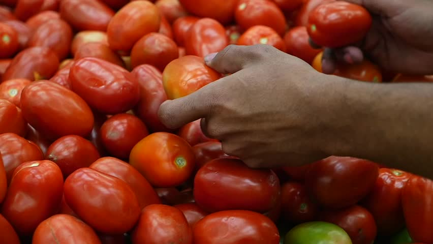 Dark hand selecting fresh tomatoes at a Brazilian supermarket