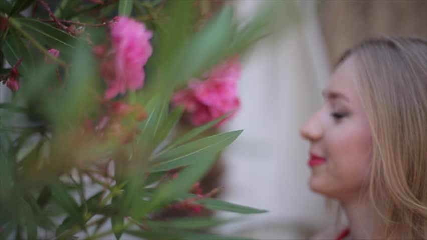 Red dress pink rose