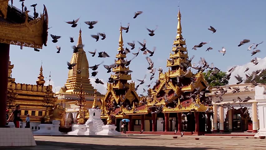 Flying pigeons over the pagodas. The pigeons in the temple courtyard. Flock of birds flying on the background of the church. Pigeons on the background of the church.