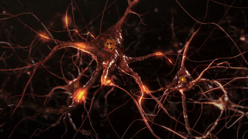 Flying across a neuron network with electric impulses. Synapse. Brain. Warm colors. Dolly. More options in my portfolio.   Shutterstock HD Video #11748794