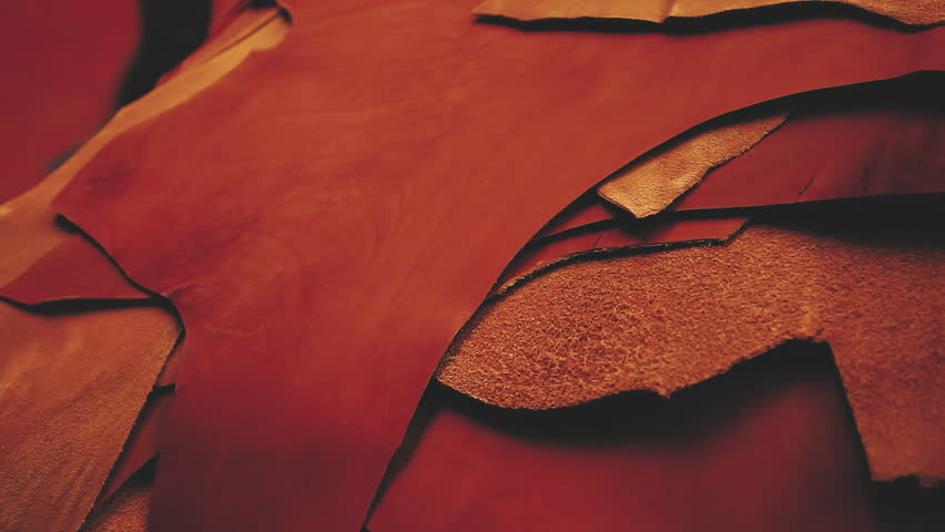 Leather factory. Samples of leather products