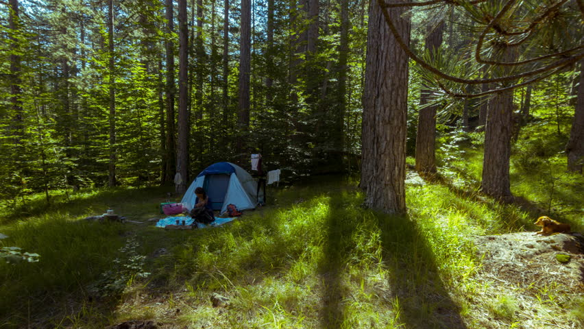camping in the woods. Early Morning Routine Of A Couple With Dog Camping Deep In The Virgin Green Woods Pindus National Park Called Valia Kalda .