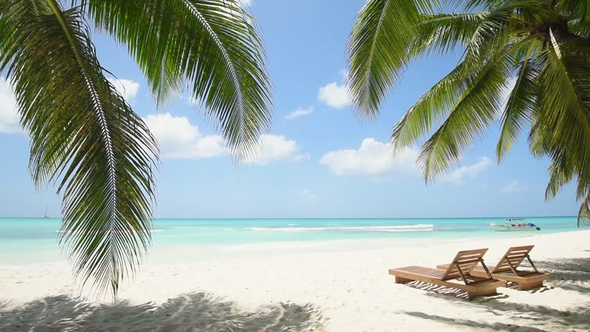 Paradise Island. Deck chair, lounge, recliner, daybed, chaise-longue, sun lounger under the palm trees on the beach. The island of Saona Dominican Republic. Sunny day. The best beaches in the world | Shutterstock HD Video #11862224