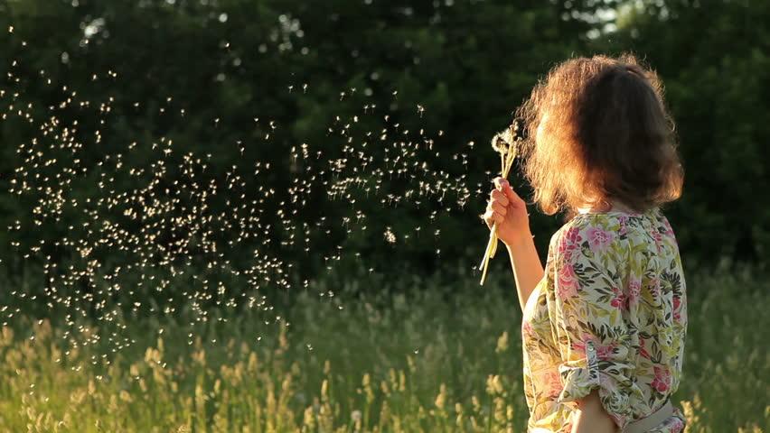 Girl blowing dandelion on the meadow