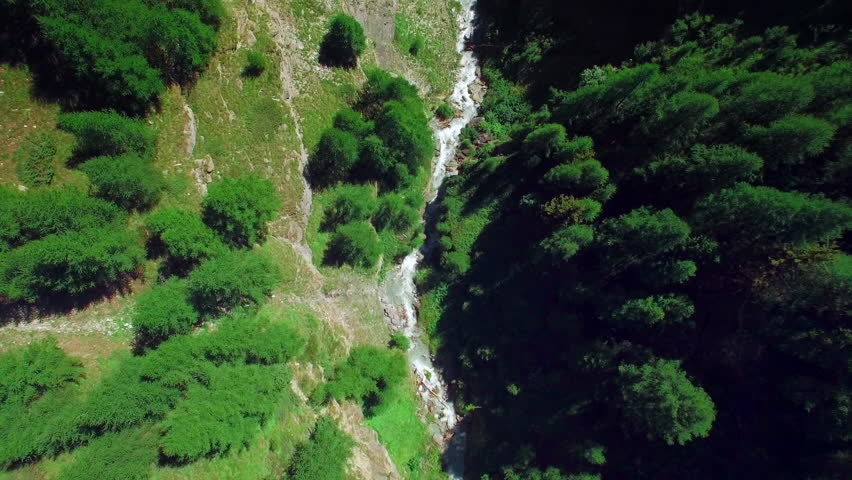 4K aerial shot, flying over a river / Flying over a little river and pine trees | Shutterstock HD Video #12145334