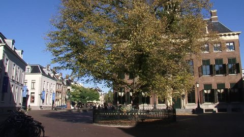 LEEUWARDEN, THE NETHERLANDS - OCT 2015: Raadhuisplein square with Wilhelmina Tree, planted on the occasion of the coronation of the queen in 1889  and old City Hall, built in 1715.