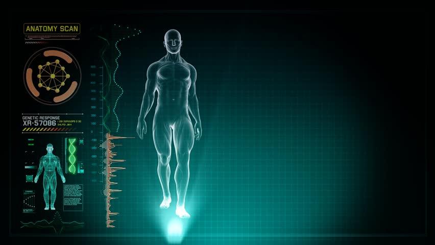 Anatomy of Human Full Body Stockvideos & Filmmaterial (100 ...