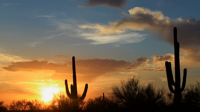 Time Lapse, Fiery sun drops behind silhouetted saguaro cactus in beautiful Arizona landscape. 1080p