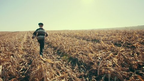 Young boy running through the corn field to the sun