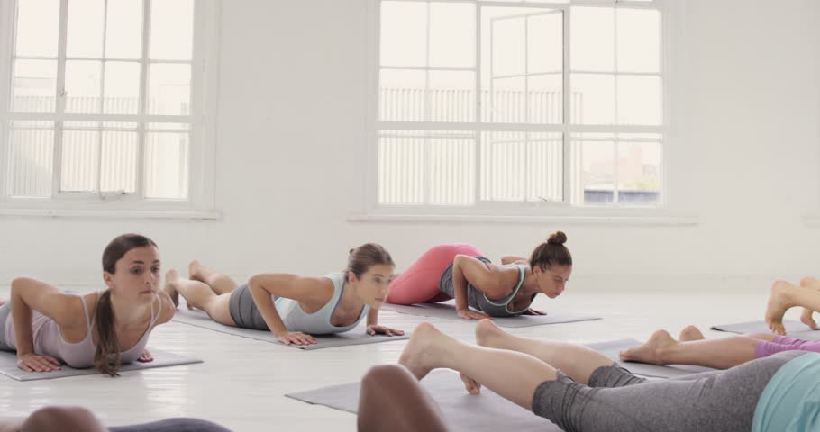 Yoga class multi racial group of women exercising healthy lifestyle in fitness studio yoga downward dog chaturanga poses | Shutterstock HD Video #12795095