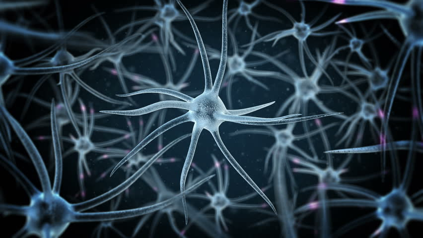 loopable science background with several neurons with depth of field #12852044