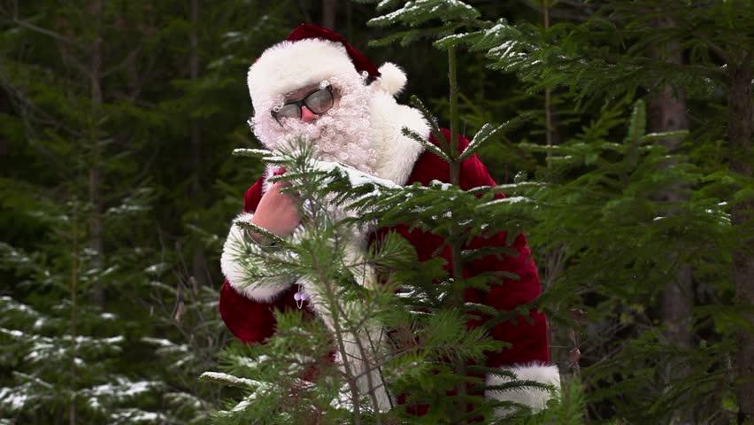 Santa Claus near spruce in forest  | Shutterstock HD Video #12988376