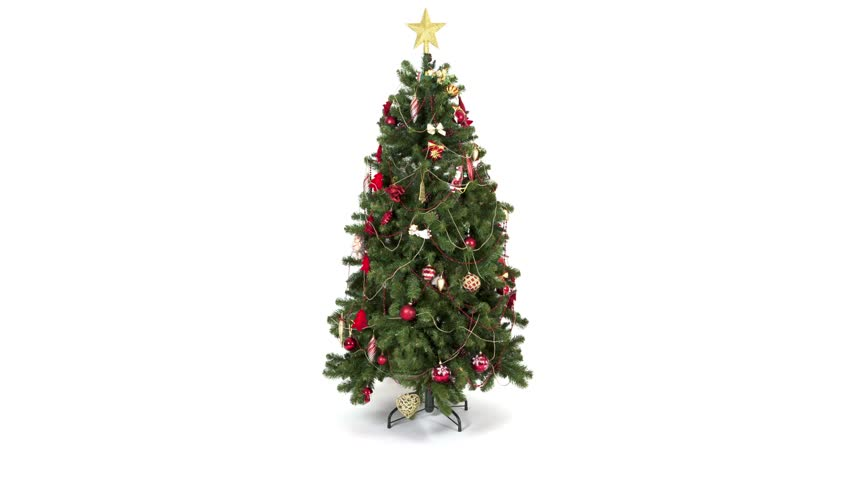 Christmas Tree White Background.Time Lapse Of Decorating The Stock Footage Video 100 Royalty Free 13230074 Shutterstock