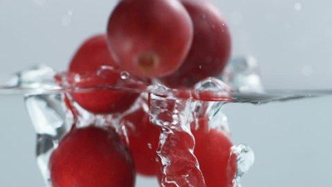 Cranberries Splashing into Water. Slow Motion.