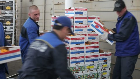 Russia, Novosibirsk - July 25, 2015: Men of a transport company for carriage of fruit shift boxes for resale food retailers and supermarkets. Workers in uniform. Order for food carriage for resale