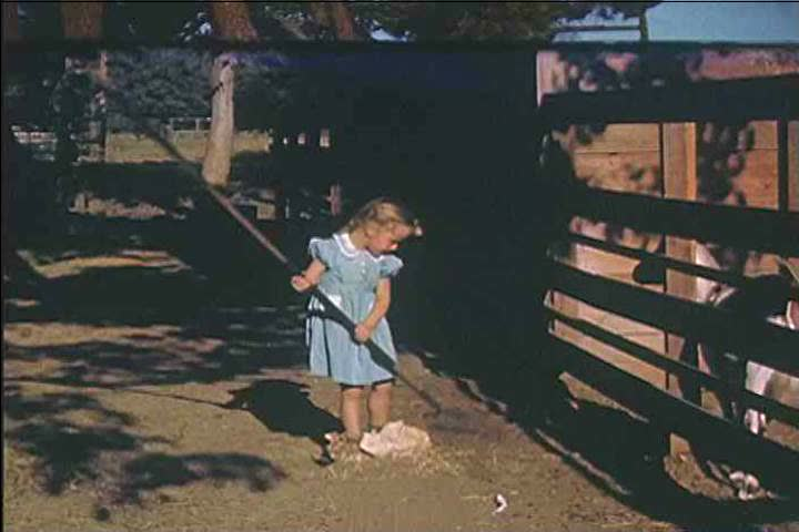 CIRCA 1940s - A little girl tries to do chores, raking, shoveling, like grown-ups, as her goat affectionately watches on a farm in 1946.