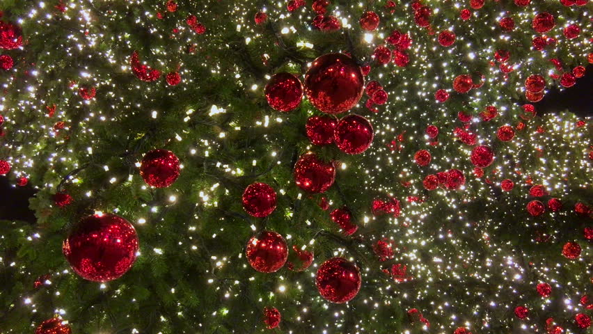 Christmas Tree Lights Background Winter Stock Footage Video 100 Royalty Free 14680624 Shutterstock