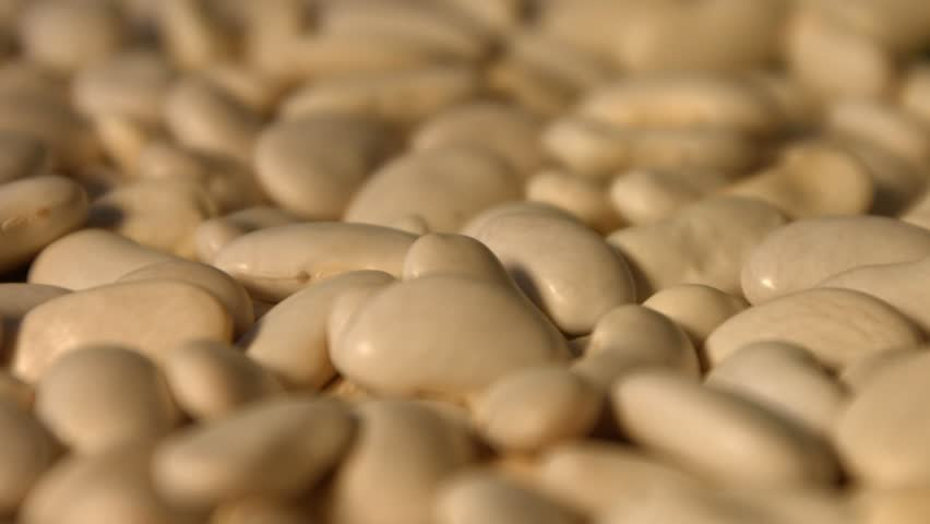 White beans. Slow motion. Close-up. Horizontal and vertical pan. 2 Shots