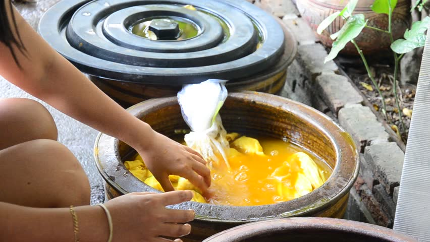 Thai women tie batik dyeing yellow natural color made from turmeric plant at Nonthaburi, Thailand.