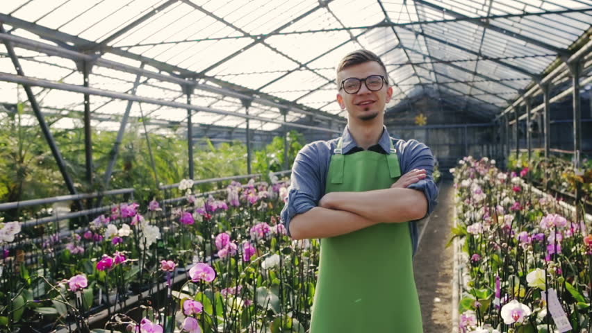 Confident man gardener in glasses standing in greenhouse with arms crossed. Slow motion.