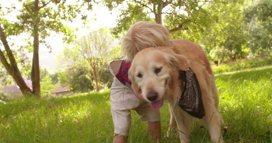 Cute blond preschooler child pets and hugging a labrador retriever dog at park