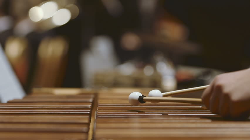 Close-up shot of musician playing xylophone. Female is performing in orchestra. She is hitting drumsticks on percussion instrument during event. Musician playing xylophone in orchestra