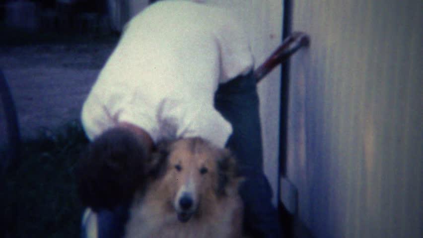 Header of lassie