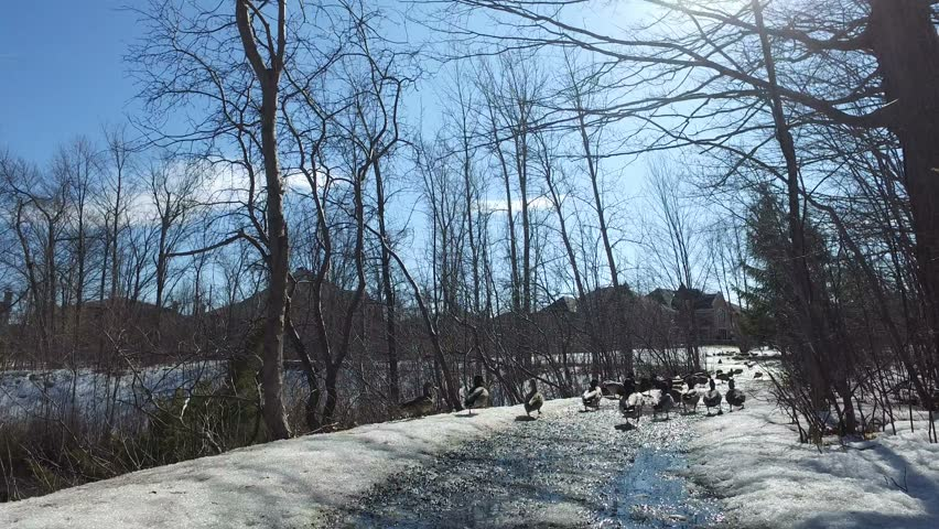 Snow Covered Country Road Landscape At Christmas Stock Footage ...