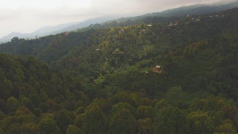 4K aerial footage of Panoramic aerial of Bali rain forrest on a beautiful day