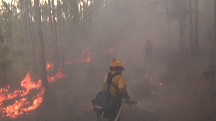 Wildland firefighters work to put out a fire in the Florida Everglades