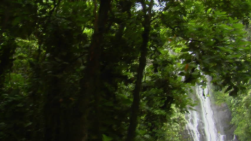 Camera dollys right across a tropical waterfall flowing through a dense rainforest in Hawaii