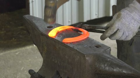 a craftsman farrier replace horseshoes/the farrier shape the horseshoe