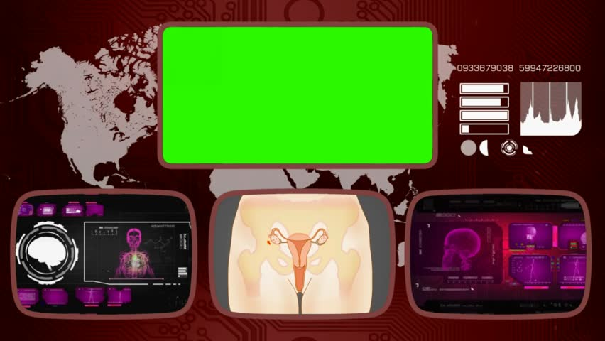 Vagina video clip