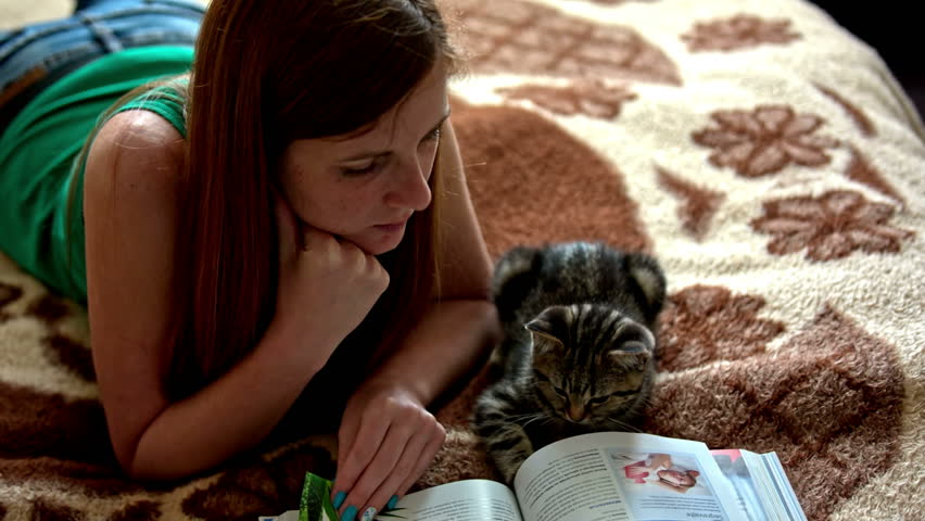 Woman and kitten reading book together. Adorable baby cat lying next to brown hair woman on warm bed and together flip through book pages, person showing parts of book.