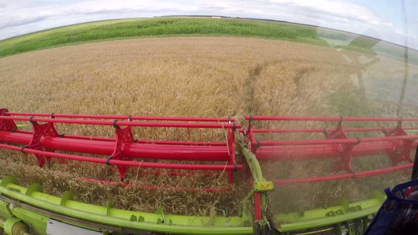 Wheat harvesting shearers | Shutterstock HD Video #16335934