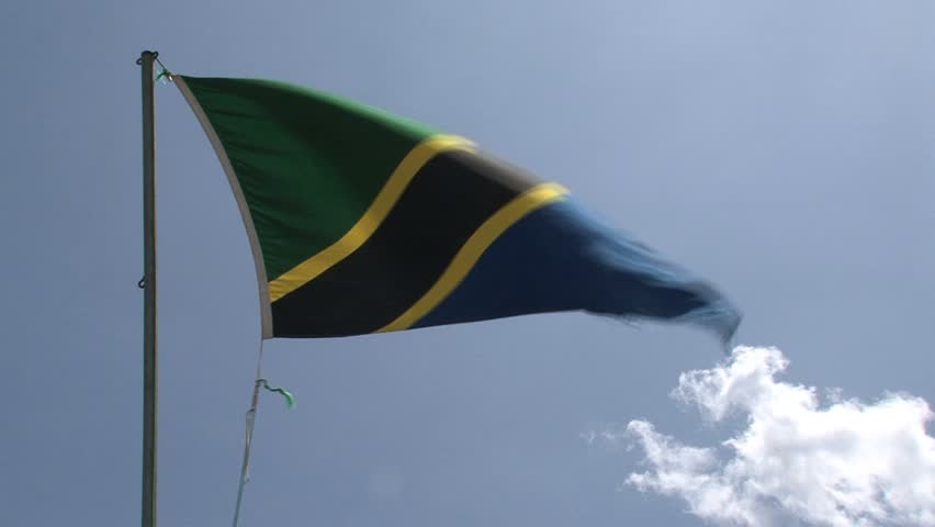 The flag from Tanzania