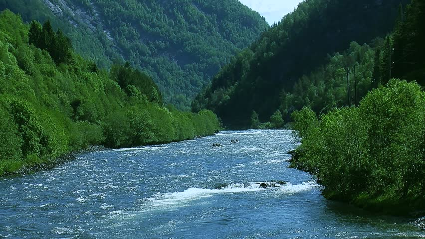 Panoramic view of river flow in mountains covered by green forest in summer sunny day. Boat floats. Blue sky. - HD stock video clip