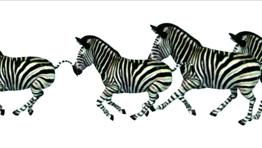 Zebra running clipart
