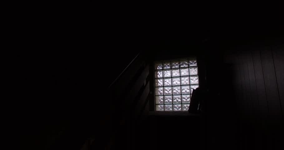 Dark hallway in the house. | Shutterstock HD Video #17064184