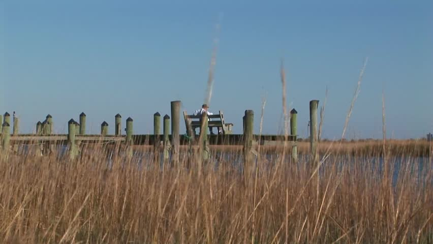 Back zoom from wooden sitting bench on boat dock to marshland in Wachapreague, Accomack county Eastern shore of Virginia, USA
