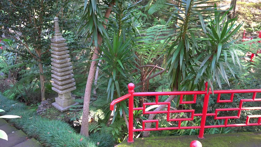 4k uhd little pond with spring and putto sculpture in tropical garden jardim tropical monte palace - Tropical Garden 2016