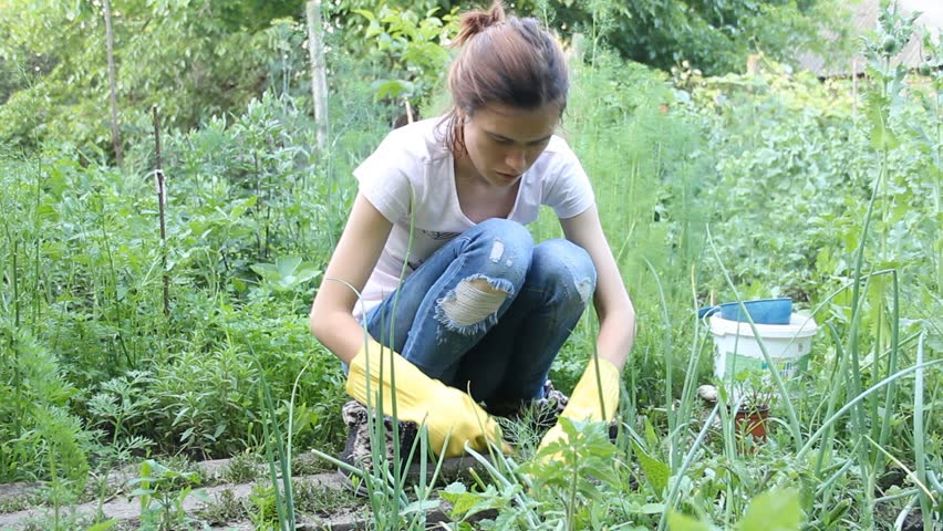 Stock Video Clip Of Young Girl Planting In The Garden Flowers. |  Shutterstock